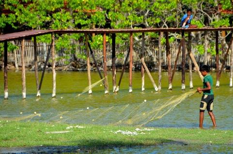 Kalpitiya - Sri Lanka
