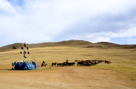A herd of horses passing by a Ovoo