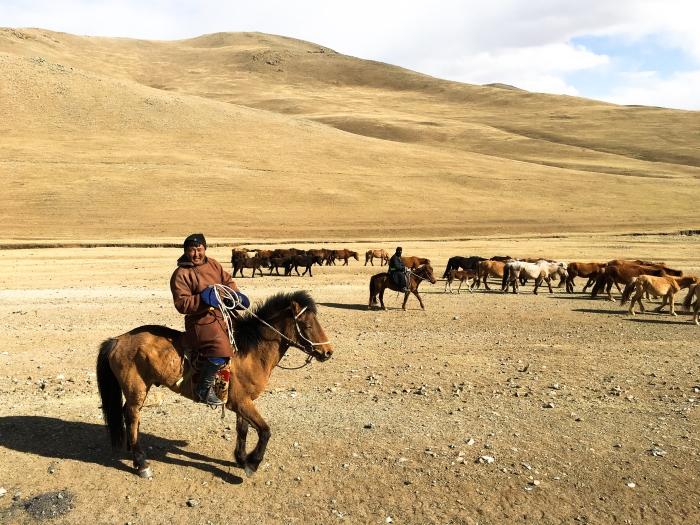 A horseman in traditional attire