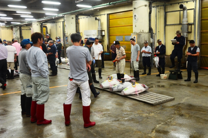 Tuna auction in Tsukiji market